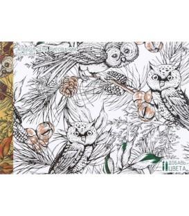 Альбом для рисования А4 «Совы в лесу» 20 л.