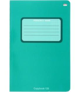 Тетрадь общая В5, 120 л. «Проф-Пресс» 160*240 мм, клетка, «Зеленая. Изумруд»