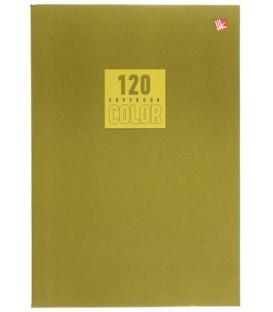 Тетрадь общая А5, 120 л. «Стиль и цвет» 140*202 мм, клетка, «Оливковый»