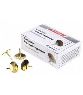 Кнопки Berlingo диаметр 10 мм, 50 шт., омедненные, золотистые